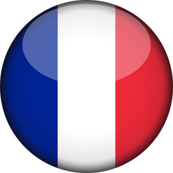 Our French Website icon